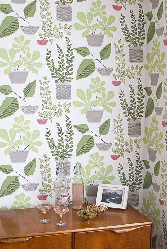 House Plants Olive från MissPrint