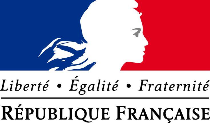 França prepara projeto de lei para regulamentar acesso aberto | SciELO em Perspectiva