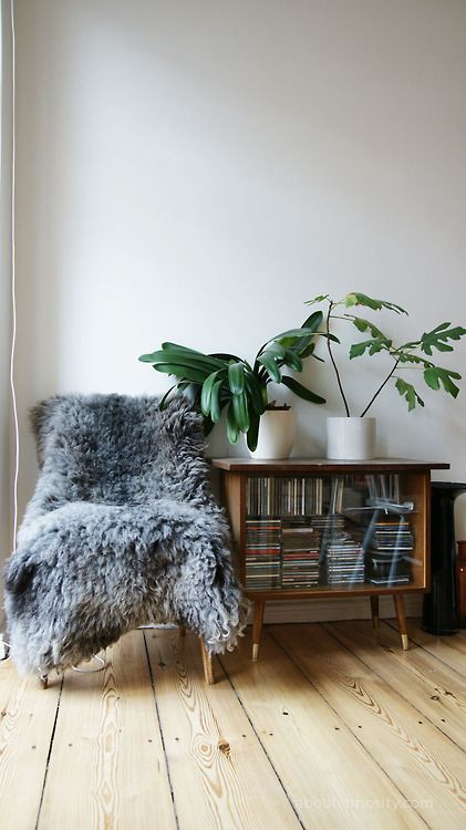 #chair #space #plant #books #room #living #home