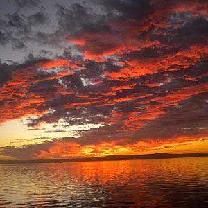 Top 22 dog-friendly vacations | Morro Bay, CA | Sunset.com