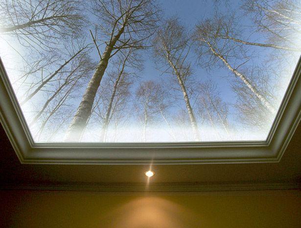Voorbeeld – fotobehang plafond met LED verlichting