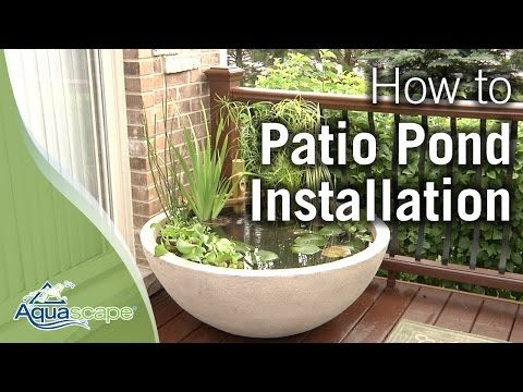 How to Create a Patio Water Garden the Easy Way - DIY & Crafts