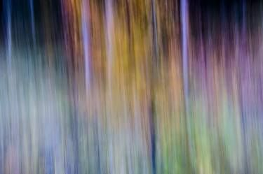 "Saatchi Art Artist paolo aizza; Photography, ""f sharp 1 • forni di sopra (ud), italy • limited edition 1 of 7"" #art"