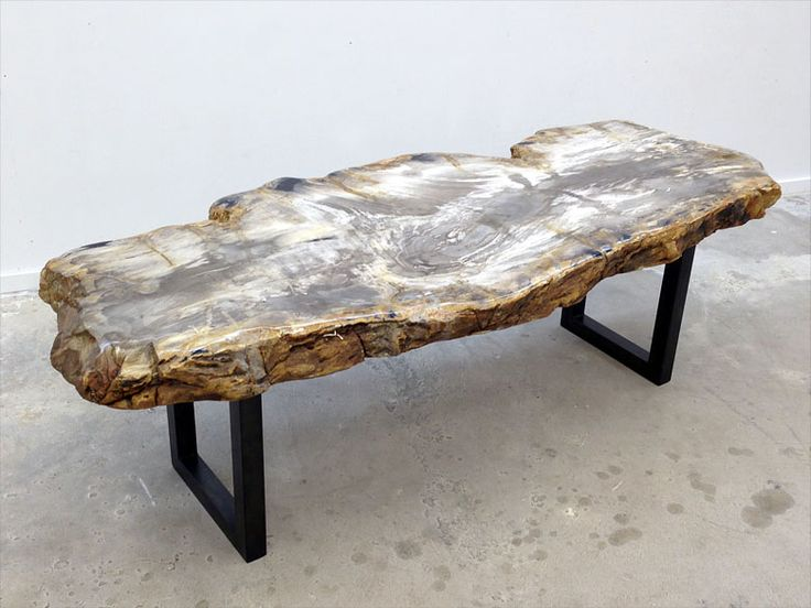 Live Edge Petrified Wood Coffee Table With Hand Rubbed Steel Base