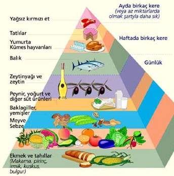 saglikli-beslenme-piramidi.jpg (344×348)
