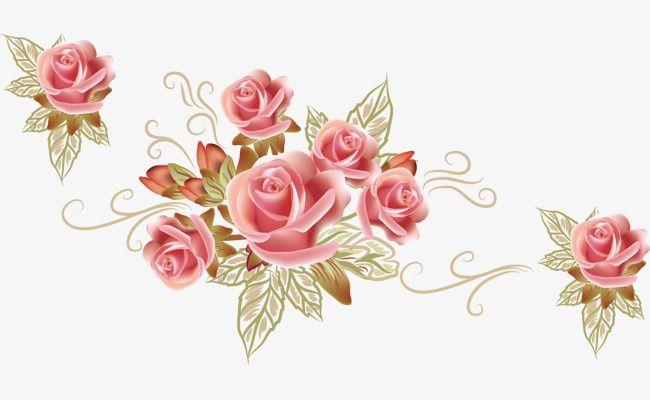 خلفيات ورود جميلة وردة البحر جميل ناقلات روز سه ناقلات المواد الورود البحر Png وملف Psd للتحميل مجانا Rosas Lindas Vetores Fundo Rosa