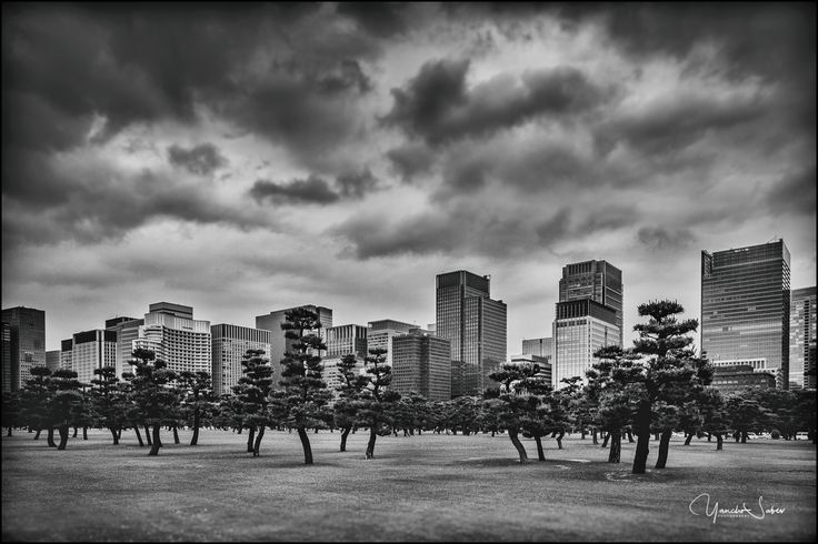 Dramatic sky above the skyscrapers of Tokyo. I was really impressed by the great vibe of the city, the fantastic architecture and all amazing people which I met there.