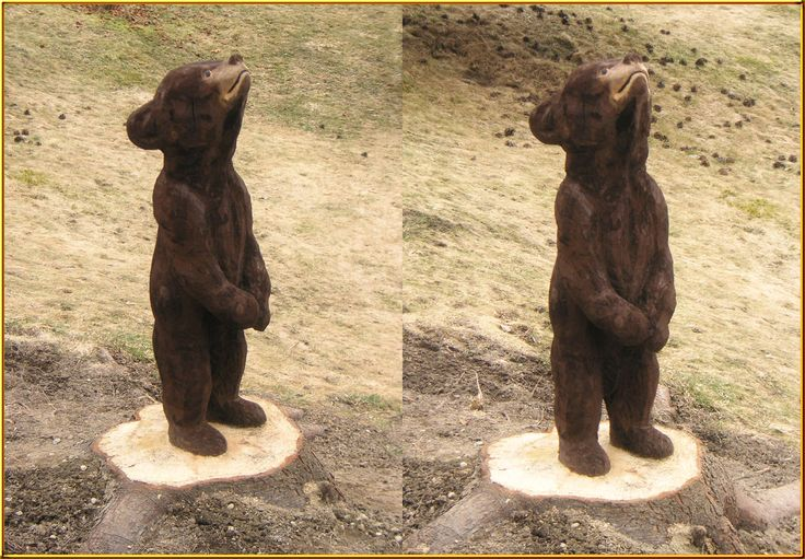 kleiner Bär stehend von Pascal Baur