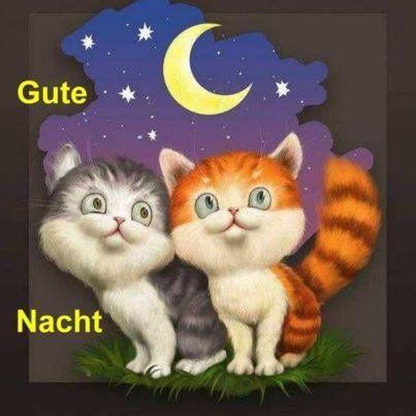 Witzige Gute Nacht Bilder Für Verliebte 9