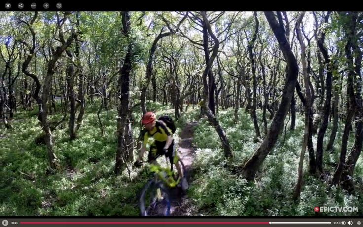 Trail Ninja Video: Never Mind The Quantocks – Chris Smith And Dan Milner Ride Southwest England | Singletracks Mountain Bike News