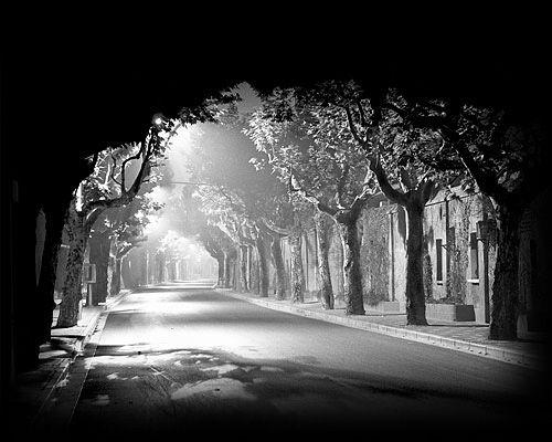 Foarte asemanatoare era strada care ducea spre scoala mea. In clasa a 4-a, iarna, am plecat in excursie intr-o dimineata, foarte devreme. Copacii erau incarcati de zapada, abia ninsese, si acum am in minte imaginea tunelului format.