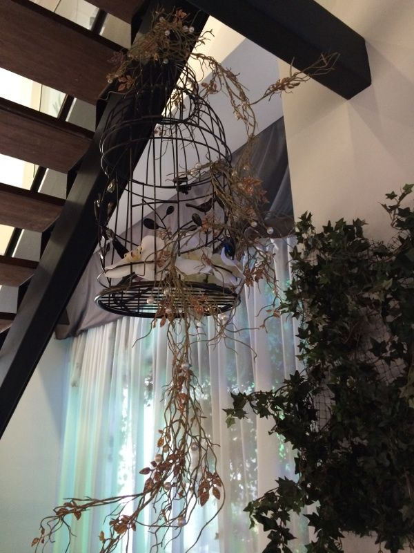 Orchid Bird Cages