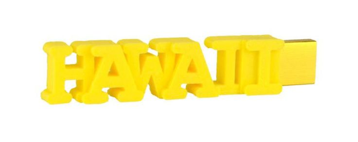 hawaii flash drive