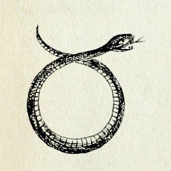 les 107 meilleures images du tableau serpent sur pinterest gypte antique serpents et antiquit. Black Bedroom Furniture Sets. Home Design Ideas