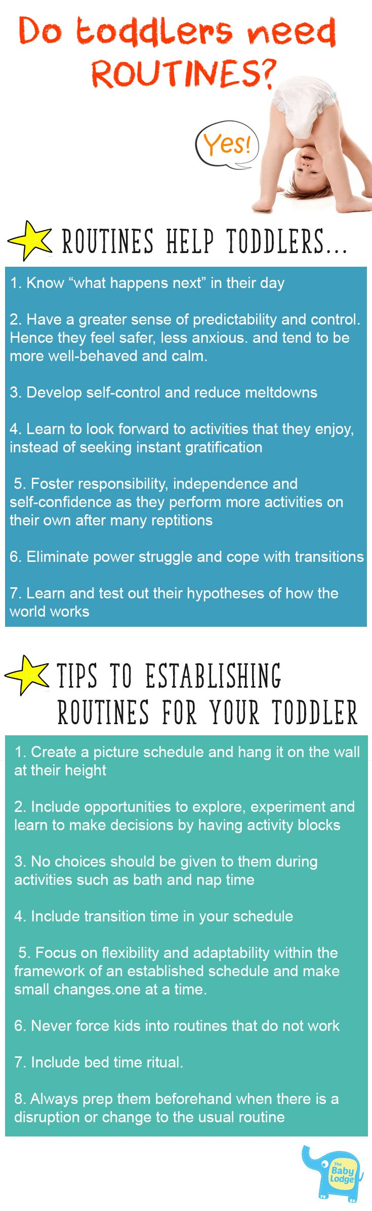 Do Toddlers Need Routines Infographic