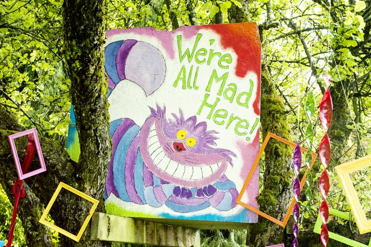 Cheshire Cat and wacky coloured picture frames attatched to the trees, creating a weird wonderland. Alice in Wonderland
