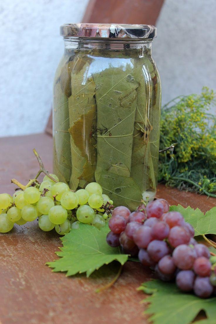 Przepisy Online: Kiszone liście winorośli do faszerowania