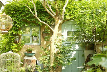裏庭のドアと窓