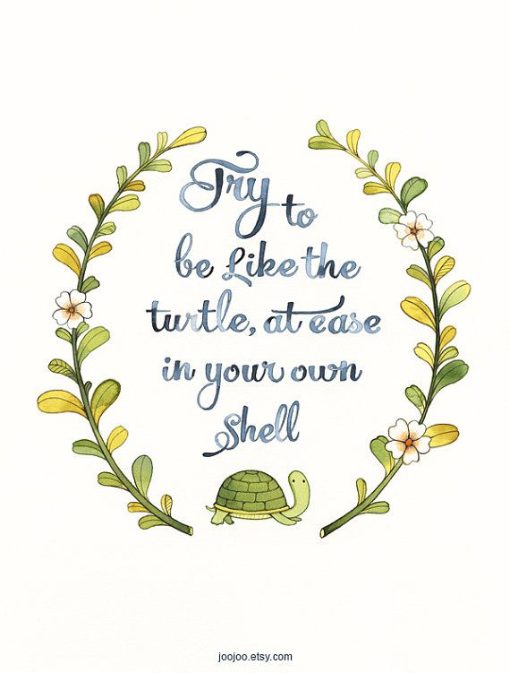 Try to be like the turtle, at ease in your own shell.
