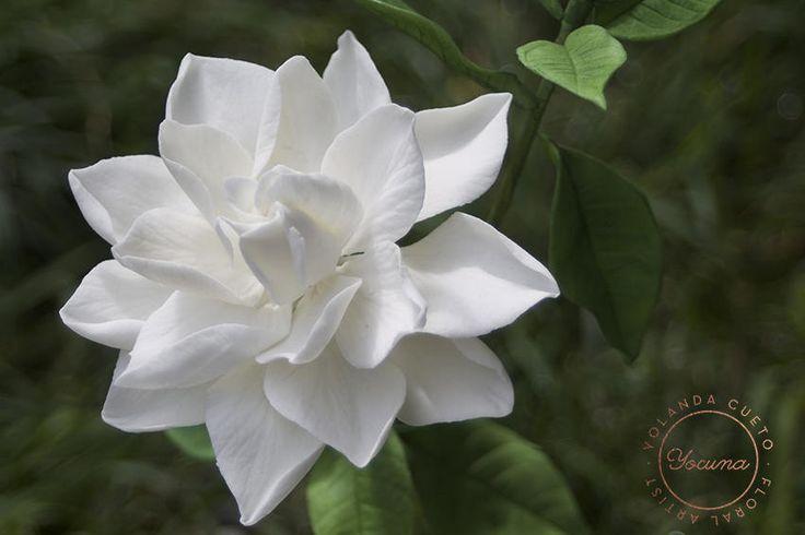 Gardenia by Yolanda Cueto - Yocuna Arte en Azúcar