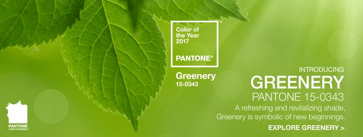 Pantone Color of the Year 2017, Greenery 15-0343 #Pantone #ColorOfTheYear2017