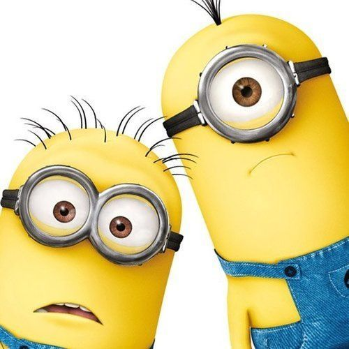 Find great deals on eBay for minion stuff. Shop with confidence.