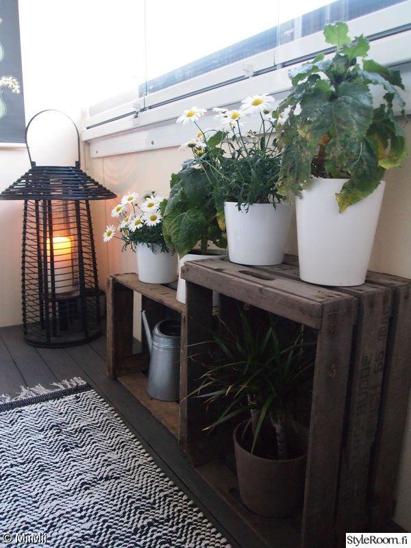 Ich liebe die Idee von Lichtern und Pflanzen. Pflanzen für die Sonne und für die Lichter