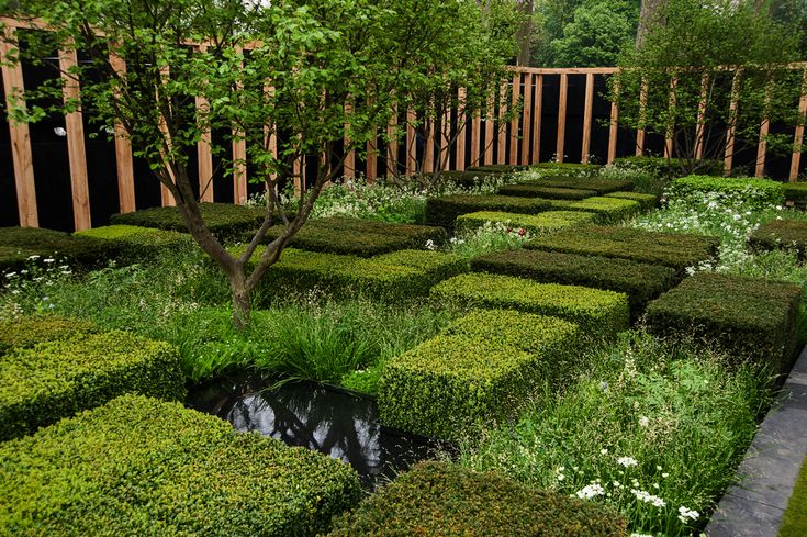 The Daily Telegraph Garden RHS Chelsea Flower Show 2013. Click to read article and to see plants list used.