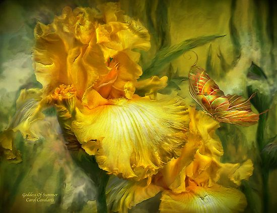 1000 Ideas About Iris Goddess On Pinterest Greek Gods