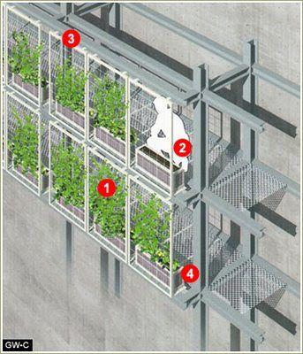 Fachadas vegetales, sistemas constructivos.