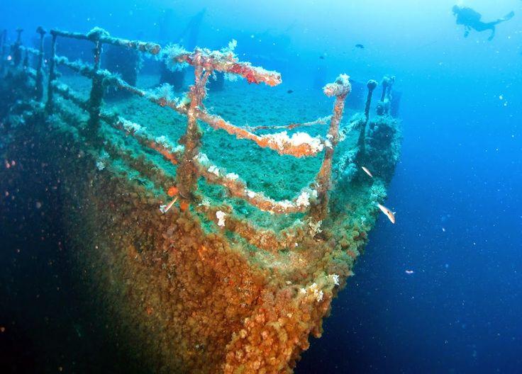 Diving Club ecosostenibile :Posidonia Blu Diving Center