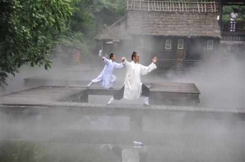 """Tai chi moves like a leaf on a stream with great swirls deep within."" - TCJ - TAI CHI CROSSROADS BLOG: taichicrossroads.blogspot.com #Tai_Chi  #Taijiquan"