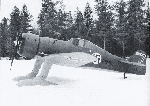 Fokker D XXI fighter  FR-110 of the Finnish Air Force with ski undercarriage.