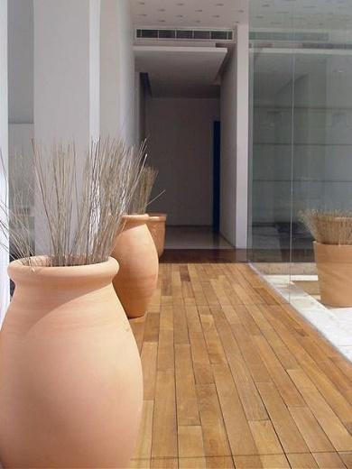large terra cotta jars/planters