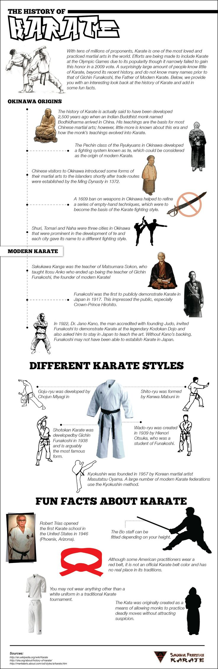 Martial arts history Karate Styles infographic