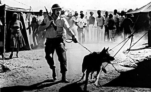 """Apartheid Police image (inspiration for Willie Bester's work """"those left behind"""")"""