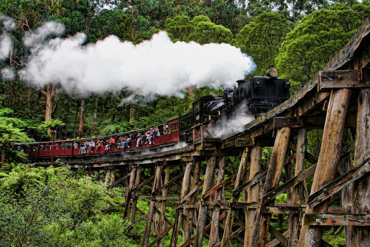 Photo Puffing Billy by Kim Andelkovic on 500px