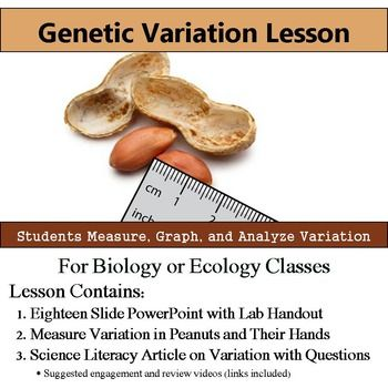 Genetic Variation Lab - Measure Variation - Literacy Article with QuestionsInterested in an entire Evolution unit?  Save money and check out this lesson bundled with six more plus an assessment here: Evolution Bundle==========================================================Want a FULL YEAR of biology lessons, labs and activities?