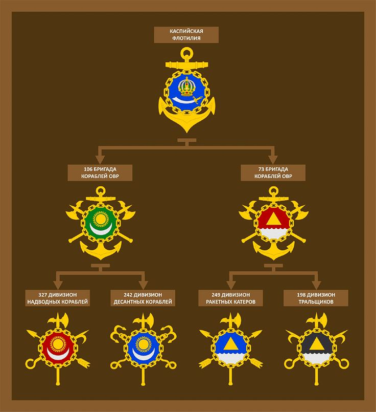 Проект символики соединений НК Каспийской флотилии