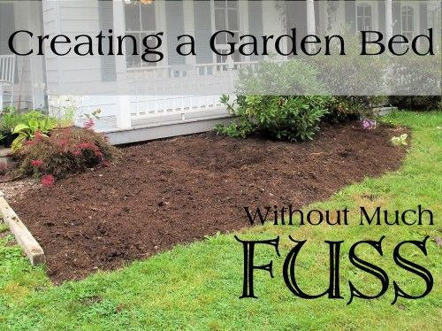 New to gardening? Check out this article to learn more about creating a garden bed!