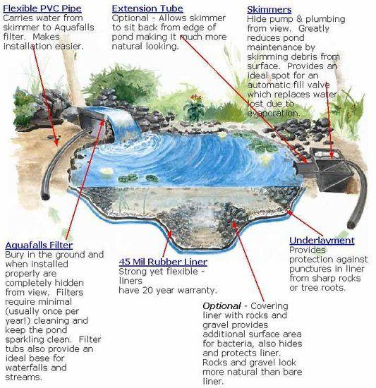 17 best images about aquaponics on pinterest hydroponics for Pond gravel filter design