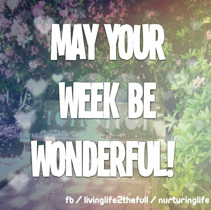 Have A Great Week Quotes