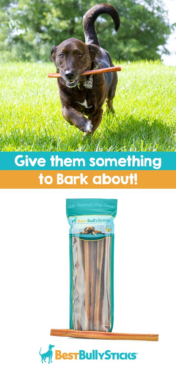 It's safe to say that dog's love treats, and it's even safer to say that they'll go crazy for Best Bulky Sticks. You'll be happy knowing that Best Bully Sticks are inspected and approved by USDA/FDA and national food inspection authorities, and they come from free-range, grass-fed bulls. It's a win-win! Check out bestbullysticks.com to find your dog's new favorite treat.