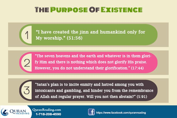 The Purpose of Existence with Reference to Quranic Verses