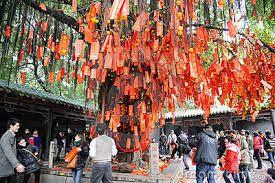 R sultat de recherche d 39 images pour arbre souhait traditionnel asie l 39 arbre pinterest - L arbre a souhait ...