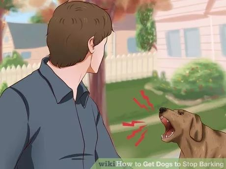 Image titled Get Dogs to Stop Barking Step 11