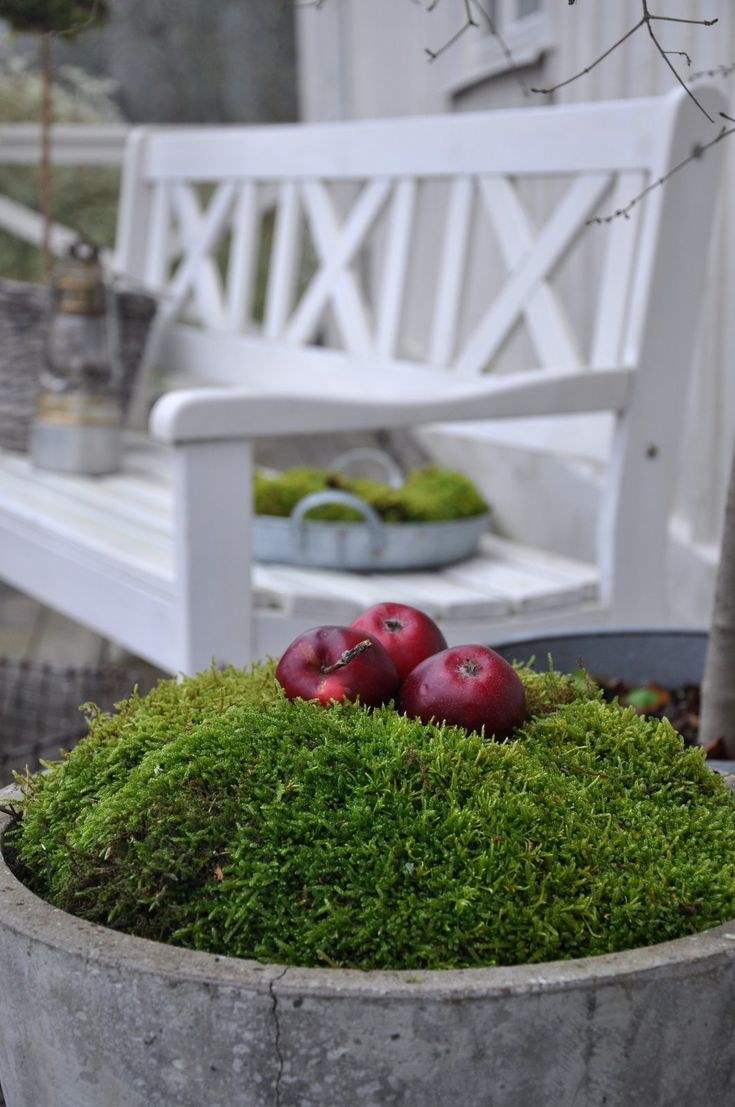 59 best fall planters images on pinterest fall planters fall