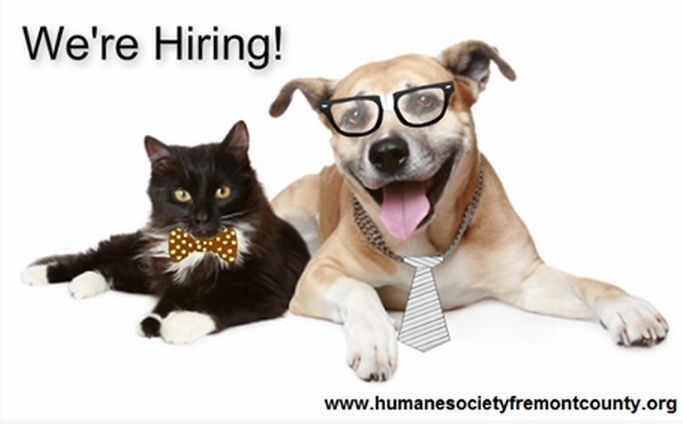 We're looking for a Community Programs Manager, a Vet Tech, and TWO part-time front office people. See job descriptions and application guidelines at www.humanesocietyfremontcounty.org/category/employment/  *** Follow us on Facebook! www.Facebook.com/HumaneSocietyFremontCounty