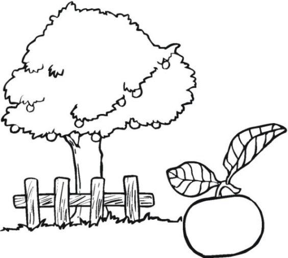 Apfelbaum Malvorlage Malvorlage Apfelbaum Malvorlage drucken 1 Ideen   – Malvorlagen