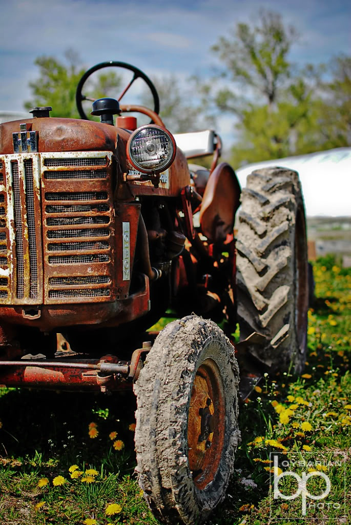 tractors via Valerie Bougie http://hisandhersphoto.net/category/miscellany/